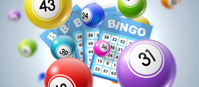 Bingo Without Deposit